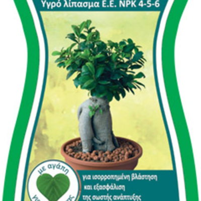 Fytopan για Bonsai 300 ml