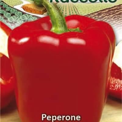Πιπεριά φλάσκα κόκκινη Raccolto 4126, Gemma